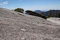 United States - California - Sequoia National Park - 03.jpg
