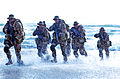 United States Navy SEALs 556.jpg