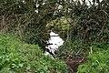 Uplowman, leat near Neddycott - geograph.org.uk - 151087.jpg