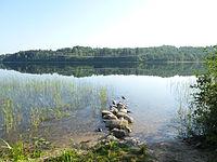 Uzhin lake 1.JPG