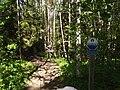 Vägskyltar Rantapiha 2013 Pukkipalo Savojärvi.jpg