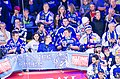VSV vs Graz in EBEL 2013-10-27 (10532416083).jpg
