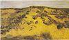 Van Gogh - Landschaft mit Dünen.jpeg