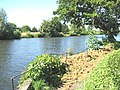 View across the River Yare - geograph.org.uk - 1368229.jpg