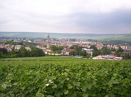 View of Épernay from Mont Bernon.jpg