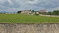 Vigna e Villa Bettoni Cazzago muro di cinta sud.jpg