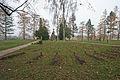 Vojenský hřbitov v Josefově u Jaroměře - zajatecký hřbitov z I. Sv. války.JPG