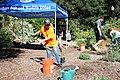 Volunteers in the Garden (38016394572).jpg