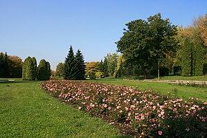 Silesian Park - Image: WP Ki W Ogród Japoński 01