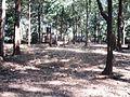Walayar Deer Park - panoramio (2).jpg