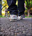 Walk in Icho Namiki (6431837457).jpg