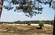 Wandeling over het Hulshorsterzand-Hulshorsterheide 09.jpg