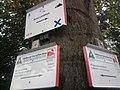 Wegweiser zwischen Netzkater und Neustadt (Abzweig zum Brockenblick, SDS 37, SDS 38).jpg