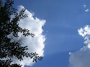 English: Thick, puffy white cloud in a blue sk...