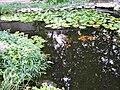 Whitt Ponds, Carmel, Indiana C - Stierch.jpg