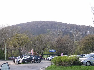 Grinzing - Latisberg hill, seen from Cobenzl.