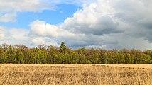 Wijnjeterper Schar, Natura 2000-gebied provincie Friesland 04.jpg