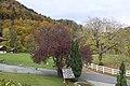 Wilderswil - panoramio - Patrick Nouhailler's… (27).jpg