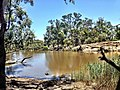 Wimmera river, Little Desert National Park.JPG