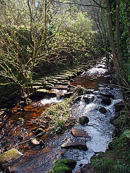 Withens Clough, Cragg Vale - geograph.org.uk - 388719