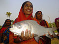 Women operated aquaculture.jpg