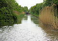 Worcester and Birmingham Canal - geograph.org.uk - 1353722.jpg