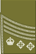 World War I British Army colonel's rank insignia (sleeve, Scottish pattern)