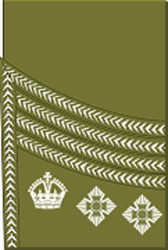 Colonel (United Kingdom) - Image: World War I British Army colonel's rank insignia (sleeve, Scottish pattern)