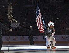 Anaheim Ducks Wikipedia