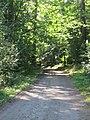 (PL) Polska - Warmia - Las Miejski w Olsztynie - The City Forest in Olsztyn (28.VIII.2012) - panoramio (37).jpg