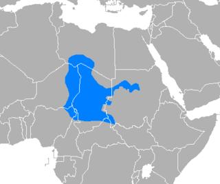 Chadian Arabic