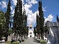 Árboles en el Cementerio de San Pedro.JPG
