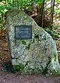 Žofínský-prales-2.jpg