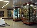 Внутри музея.JPG