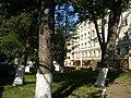 Група рідкісних дерев на Буковинській.JPG