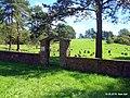 Еврейское кладбище - panoramio - Иван Бай.jpg
