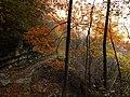 Есен - Екопътека Вазов път , гара Бов 02.jpg