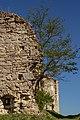 Замок (руїни) (мури.), Чорнокозинці.jpg