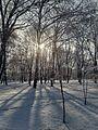 Зимовий етюд1.jpg