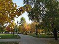 Золотая осень - panoramio (12).jpg