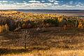Золота осінь на Дніпрі.jpg