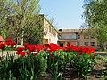 Новоукраїнська школа №6.jpg