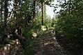 Перевал между Икинем и Лемезой - panoramio.jpg
