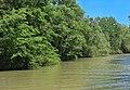 Река Камчия и резерват Камчия.jpg