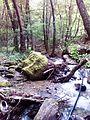 Смоларски водопад 9.jpg