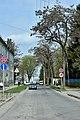 Тернопіль - Вулиця Клінічна - 17045379.jpg