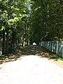 Усадьба Балина33.jpg