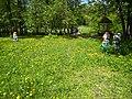 Чернігів, міський сад 5.jpg