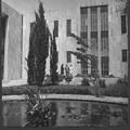 ירושלים - ביקור מר גילמן בבית החולים הדסה הר הצופים-PHKH-1262948.png