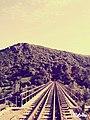 منظر طبيعي خلاب لسكة حديدية في الطبيعة.jpg